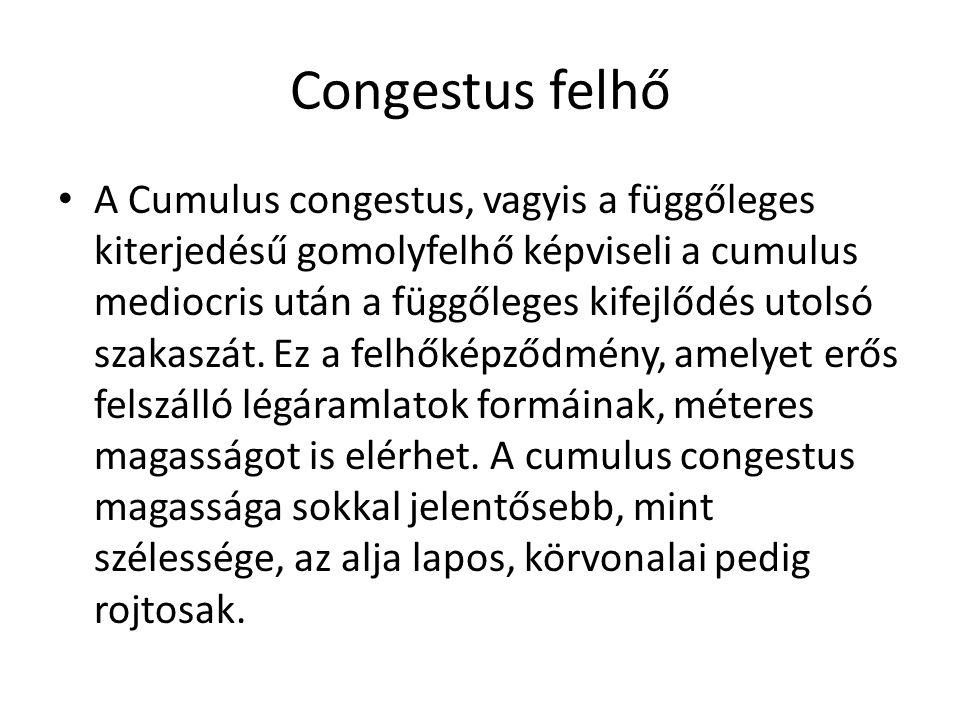 A Cumulus congestus, vagyis a függőleges kiterjedésű gomolyfelhő képviseli a cumulus mediocris után a függőleges kifejlődés utolsó szakaszát. Ez a fel