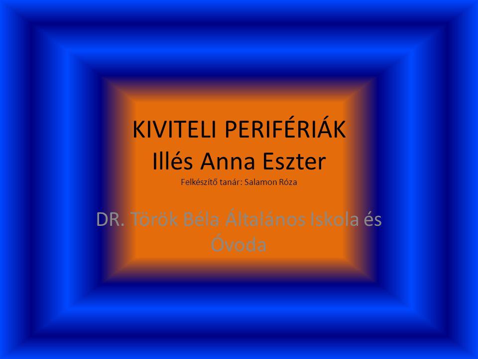 KIVITELI PERIFÉRIÁK Illés Anna Eszter Felkészítő tanár: Salamon Róza DR.
