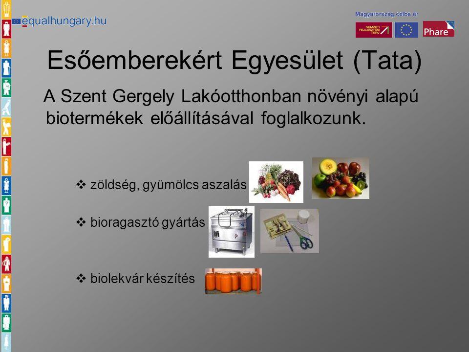 Esőemberekért Egyesület (Tata) A Szent Gergely Lakóotthonban növényi alapú biotermékek előállításával foglalkozunk.  zöldség, gyümölcs aszalás  bior