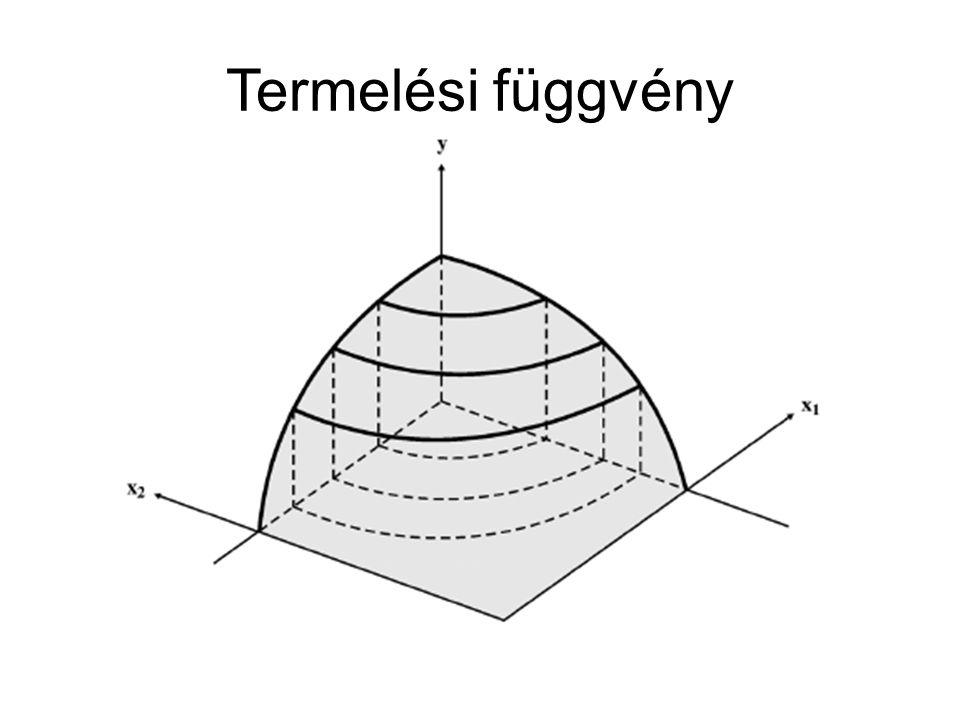 Termelési függvény