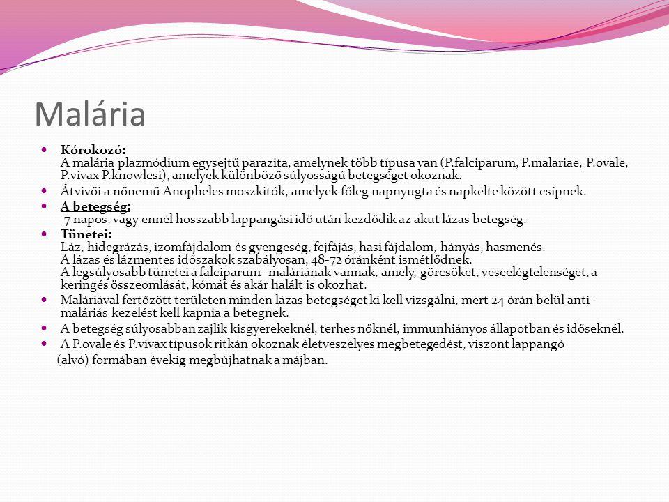 Malária Kórokozó: A malária plazmódium egysejtű parazita, amelynek több típusa van (P.falciparum, P.malariae, P.ovale, P.vivax P.knowlesi), amelyek kü