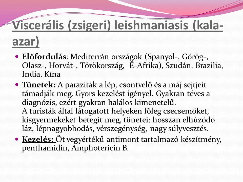 Viscerális (zsigeri) leishmaniasis (kala- azar) Előfordulás: Mediterrán országok (Spanyol-, Görög-, Olasz-, Horvát-, Törökország, É-Afrika), Szudán, B
