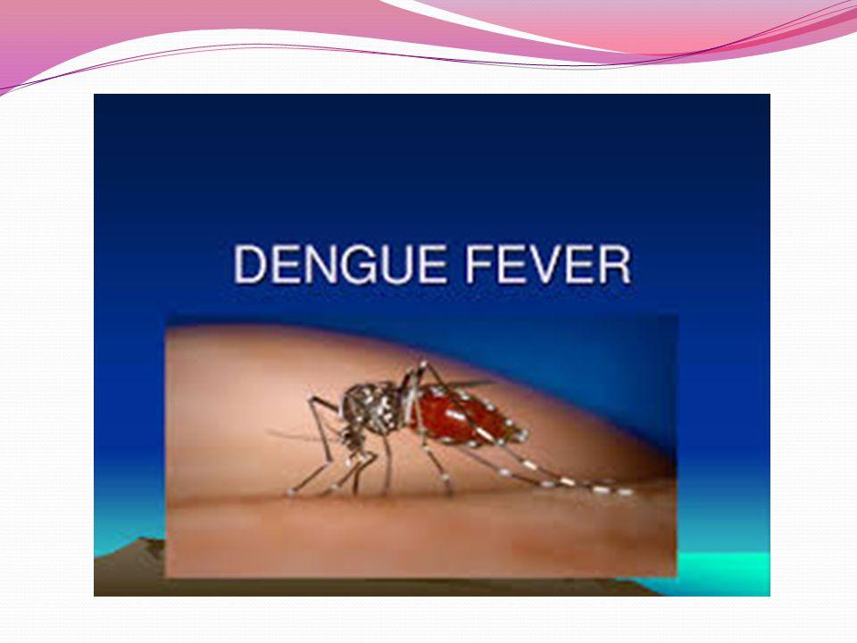 Nyálkahártya-leishmaniasis (espundia vagy pian bois) Előfordulása: Dél-Amerika, Amazonas területe Tünetek:Orr és a száj körül fekélyesedés Védekezés: a szúnyogcsípés kerülésével: A törpeszúnyogok napnyugtakor és napkeltekor a legaktívabbak (hasonlóan a maláriát terjesztő szúnyogokhoz).