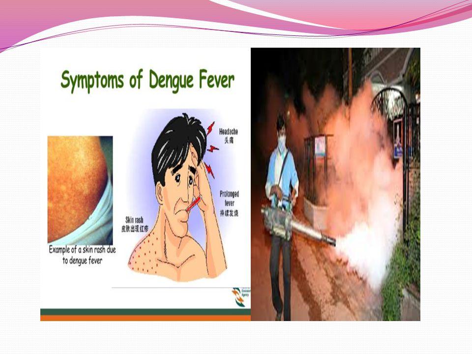 Chikungunya- láz A chikungunya-vírus egy pozitív, egyszálú RNS vírus.