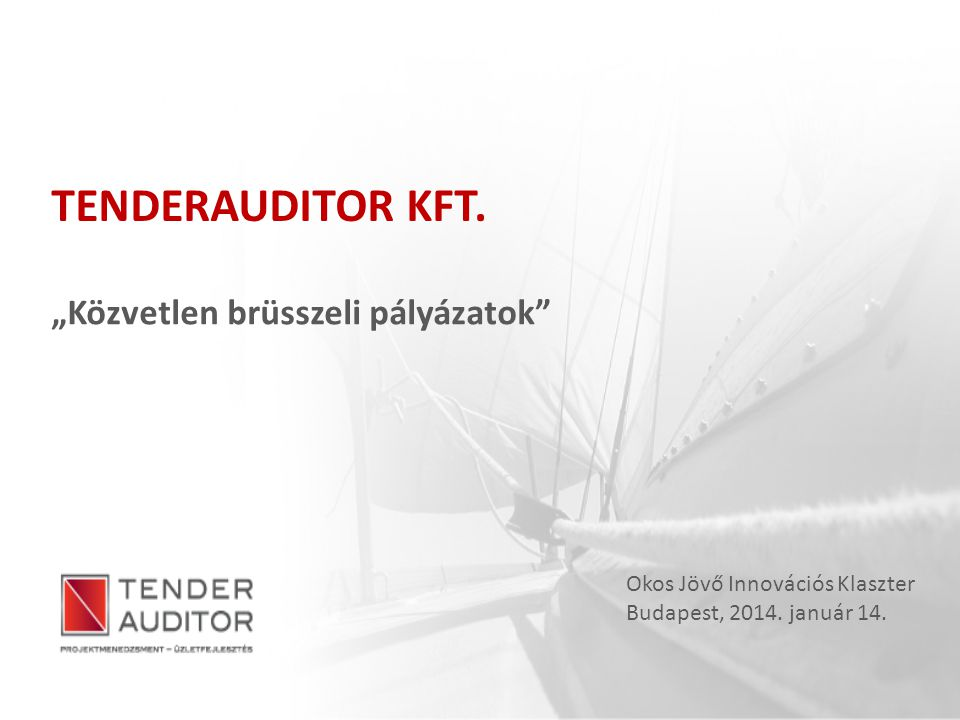 """TENDERAUDITOR KFT. """"Közvetlen brüsszeli pályázatok"""" Okos Jövő Innovációs Klaszter Budapest, 2014. január 14."""