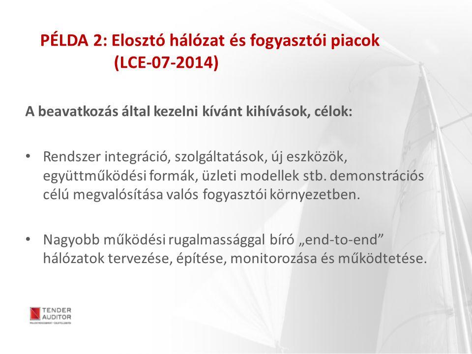 PÉLDA 2: Elosztó hálózat és fogyasztói piacok (LCE-07-2014) A beavatkozás által kezelni kívánt kihívások, célok: Rendszer integráció, szolgáltatások,
