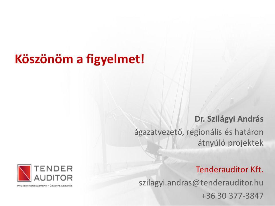 Köszönöm a figyelmet! Dr. Szilágyi András ágazatvezető, regionális és határon átnyúló projektek Tenderauditor Kft. szilagyi.andras@tenderauditor.hu +3
