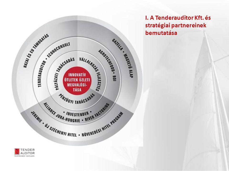 I. A Tenderauditor Kft. és stratégiai partnereinek bemutatása