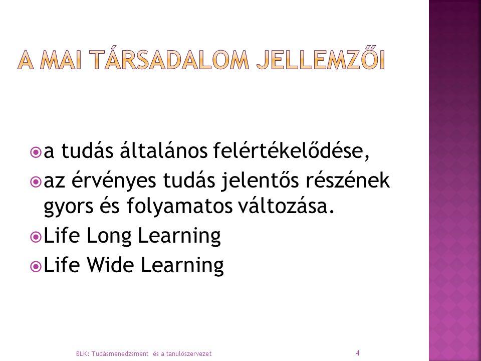  a tudás általános felértékelődése,  az érvényes tudás jelentős részének gyors és folyamatos változása.  Life Long Learning  Life Wide Learning BL