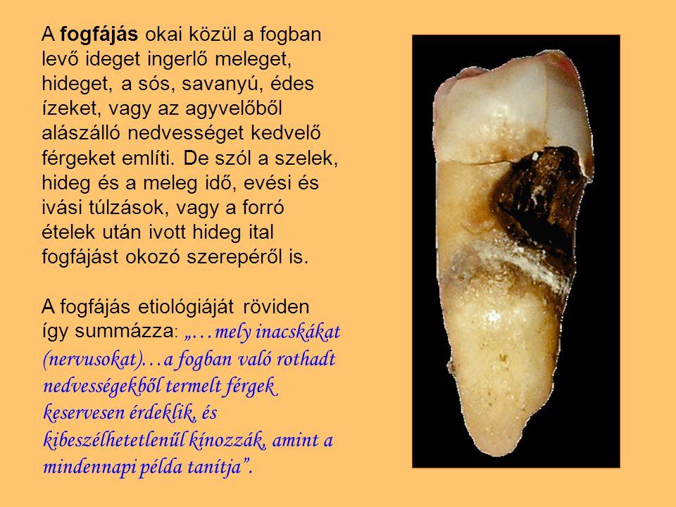 A fogfájás okai közül a fogban levő ideget ingerlő meleget, hideget, a sós, savanyú, édes ízeket, vagy az agyvelőből alászálló nedvességet kedvelő férgeket említi.