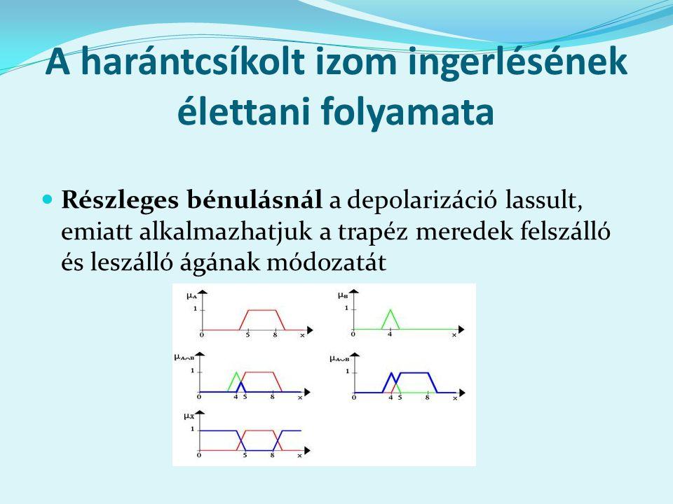 A harántcsíkolt izom ingerlésének élettani folyamata Részleges bénulásnál a depolarizáció lassult, emiatt alkalmazhatjuk a trapéz meredek felszálló és