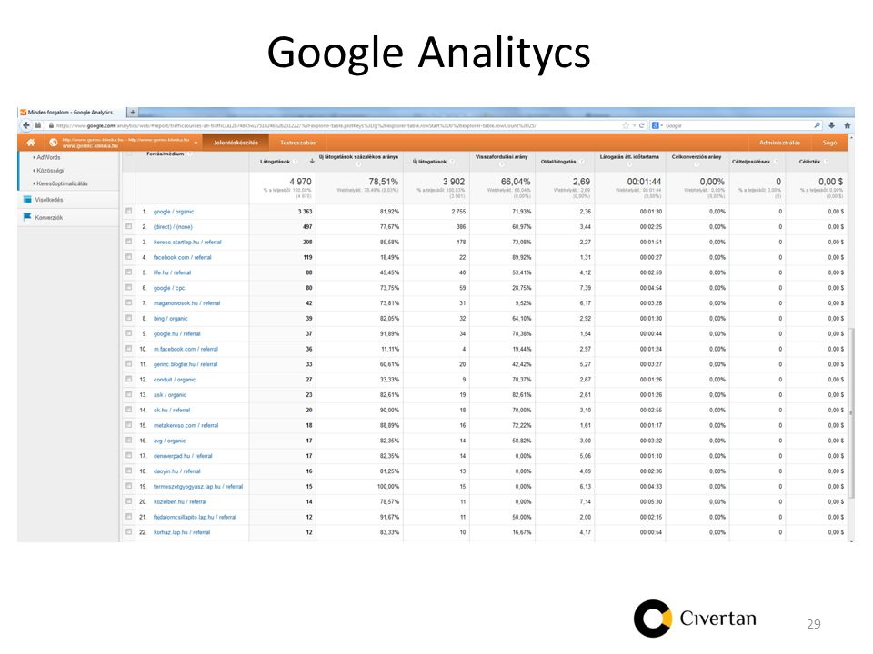 Google Analitycs 29