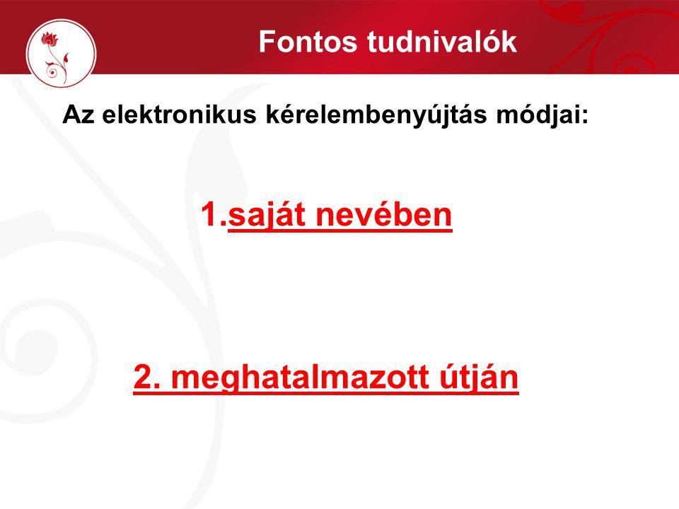 Fontos tudnivalók Az elektronikus kérelembenyújtás módjai: 1.saját nevében 2. meghatalmazott útján