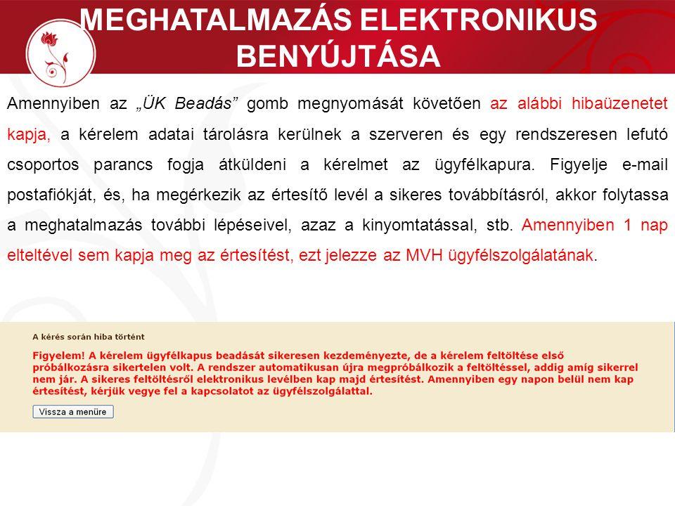 """MEGHATALMAZÁS ELEKTRONIKUS BENYÚJTÁSA Amennyiben az """"ÜK Beadás"""" gomb megnyomását követően az alábbi hibaüzenetet kapja, a kérelem adatai tárolásra ker"""