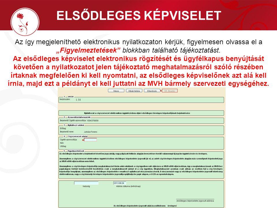 """ELSŐDLEGES KÉPVISELET Az így megjeleníthető elektronikus nyilatkozaton kérjük, figyelmesen olvassa el a """"Figyelmeztetések"""" blokkban található tájékozt"""