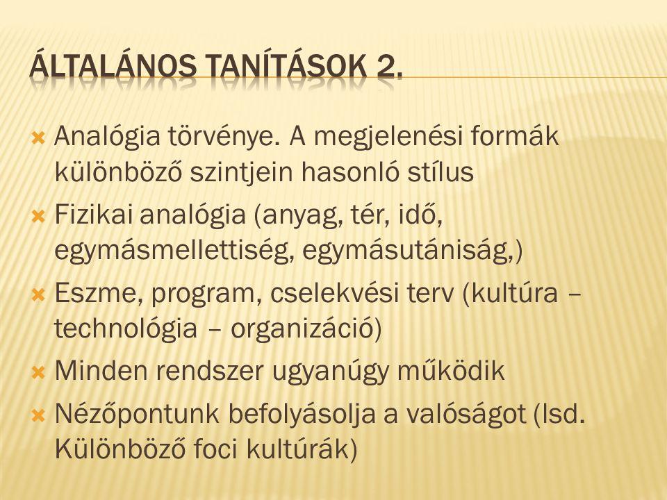  Analógia törvénye. A megjelenési formák különböző szintjein hasonló stílus  Fizikai analógia (anyag, tér, idő, egymásmellettiség, egymásutániság,)