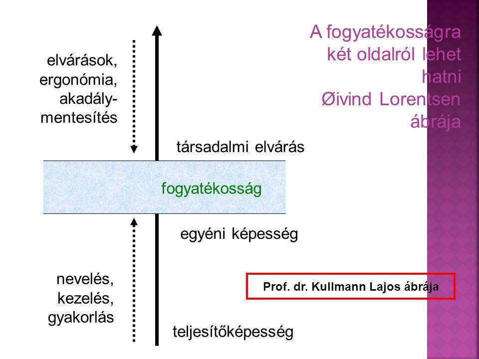 A fogyatékosságra két oldalról lehet hatni Øivind Lorentsen ábrája elvárások, ergonómia, akadály- mentesítés nevelés, kezelés, gyakorlás társadalmi el