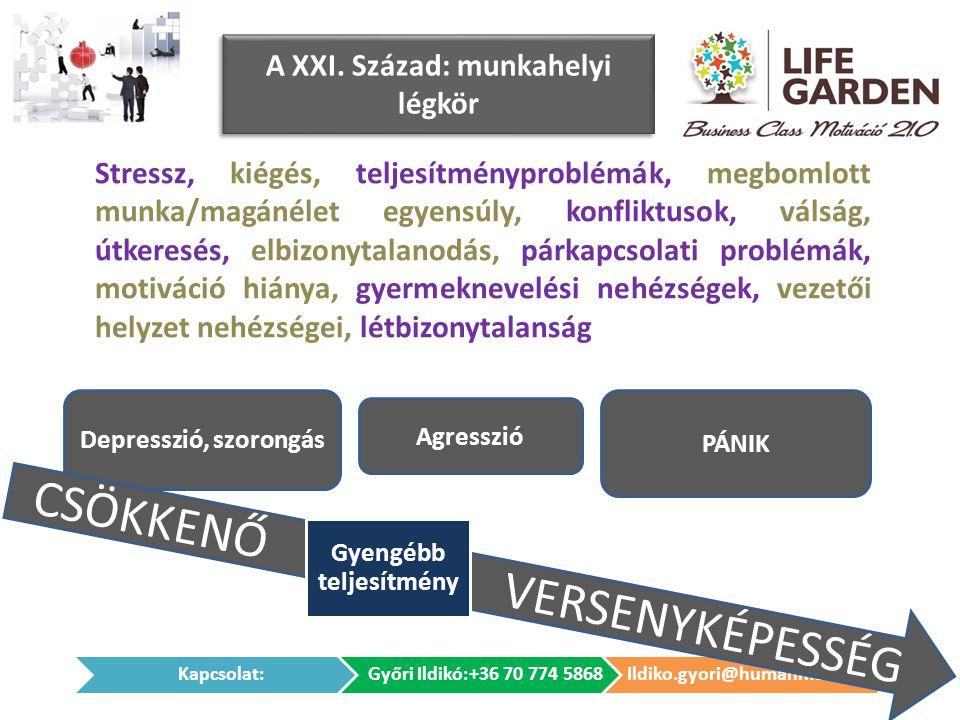 Depresszió, szorongás CSÖKKENŐ VERSENYKÉPESSÉG A XXI. Század: munkahelyi légkör Stressz, kiégés, teljesítményproblémák, megbomlott munka/magánélet egy