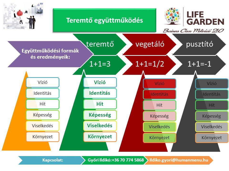 Teremtő együttműködés VízióIdentitásHitKépességViselkedésKörnyezet 1+1=31+1=1/21+1=-1 VízióIdentitásHitKépességViselkedésKörnyezetVízióIdentitásHitKép