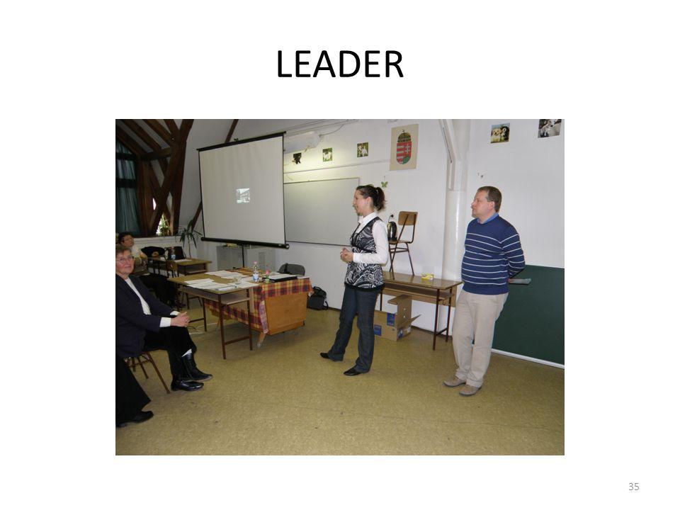 LEADER 35