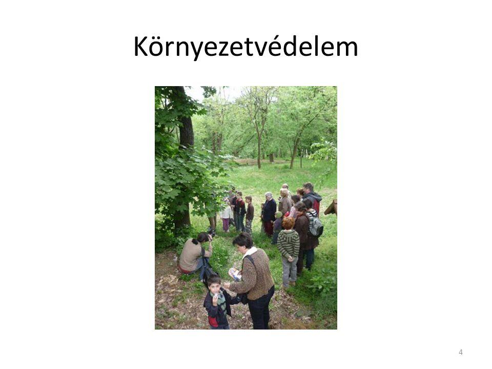 Környezetvédelem 4