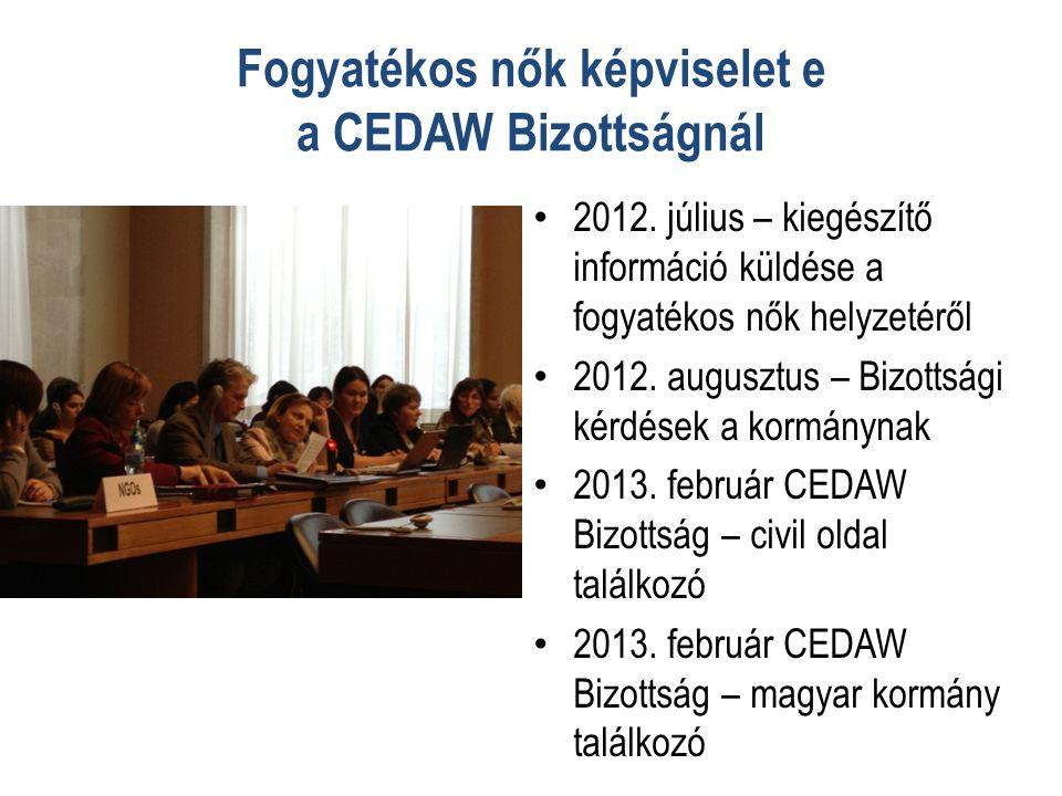 Fogyatékos nők képviselet e a CEDAW Bizottságnál • 2012.