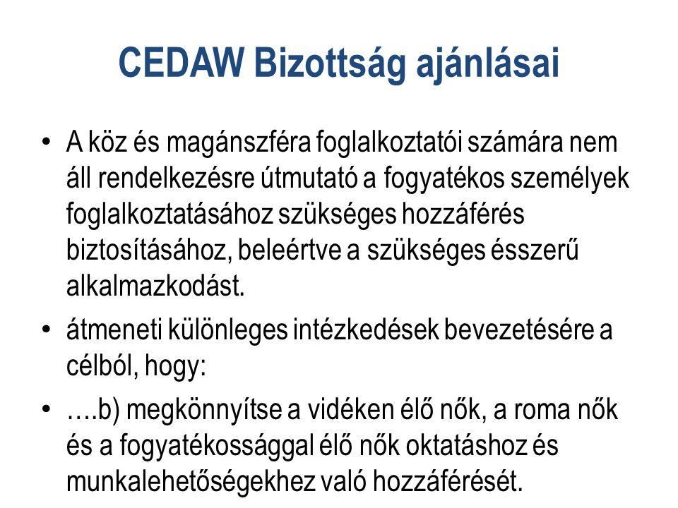 CEDAW Bizottság ajánlásai • A köz és magánszféra foglalkoztatói számára nem áll rendelkezésre útmutató a fogyatékos személyek foglalkoztatásához szükséges hozzáférés biztosításához, beleértve a szükséges ésszerű alkalmazkodást.