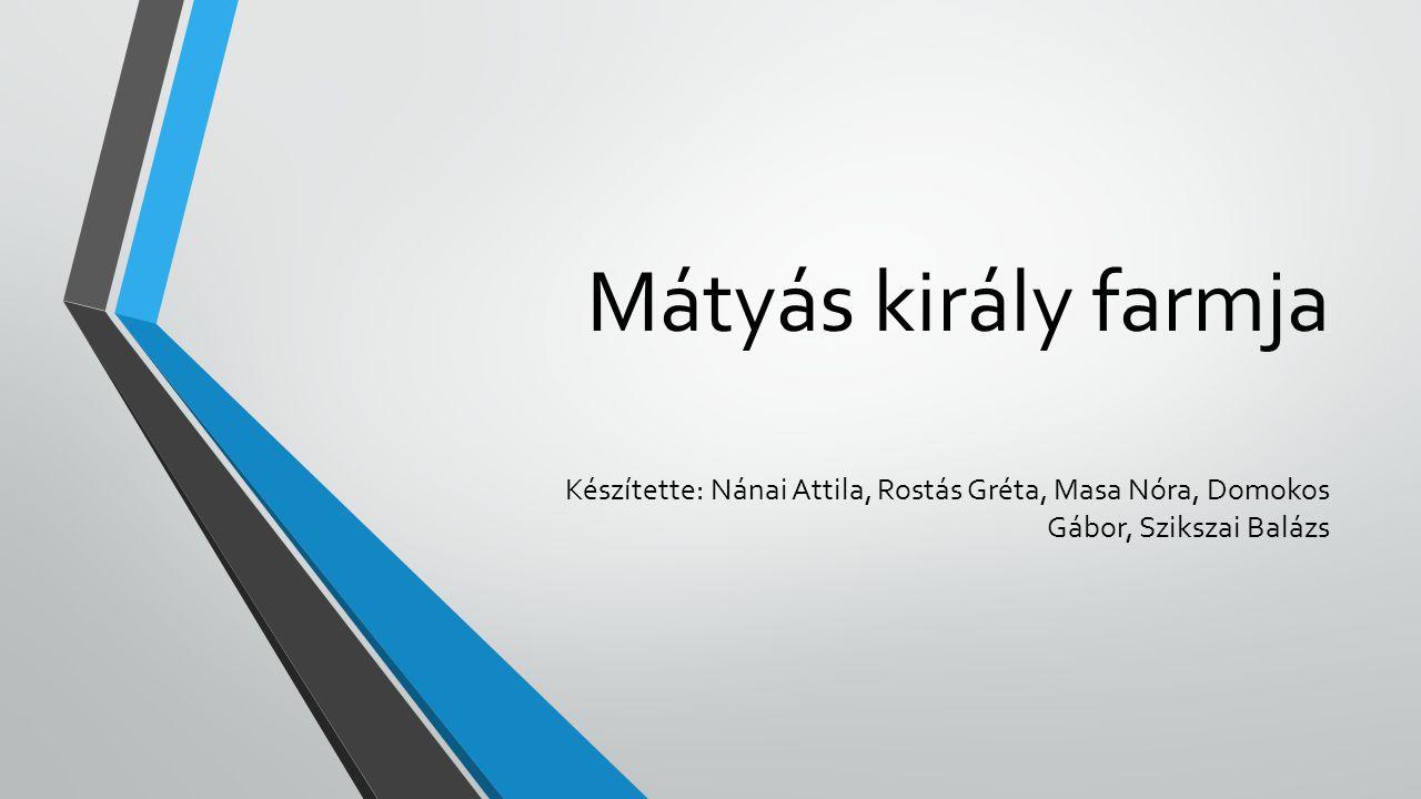 Mátyás király farmja Készítette: Nánai Attila, Rostás Gréta, Masa Nóra, Domokos Gábor, Szikszai Balázs