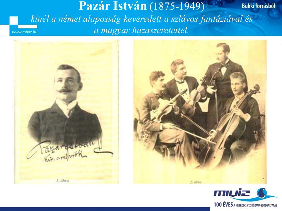 Pazár munkássága • 1905-ben (30 évesen) elvállalta a kialakulóban lévő Miskolci Vízművek irányítását, amelyet 1938-ig, nyugdíjba vonulásáig látott el.