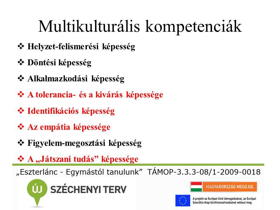 Multikulturális kompetenciák  Helyzet-felismerési képesség  Döntési képesség  Alkalmazkodási képesség  A tolerancia- és a kivárás képessége  Iden