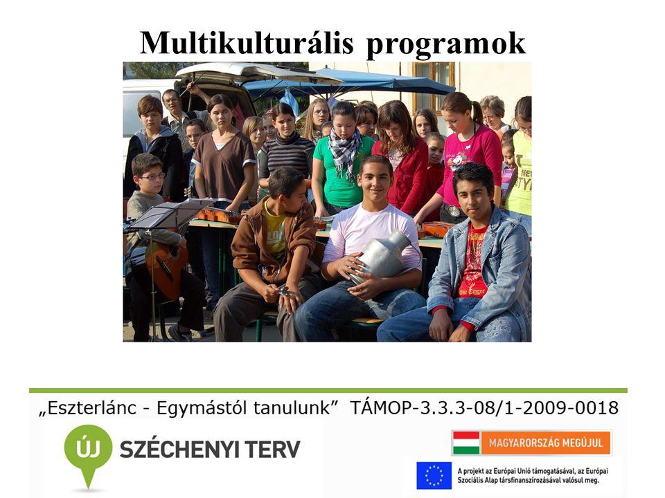 Multikulturális programok