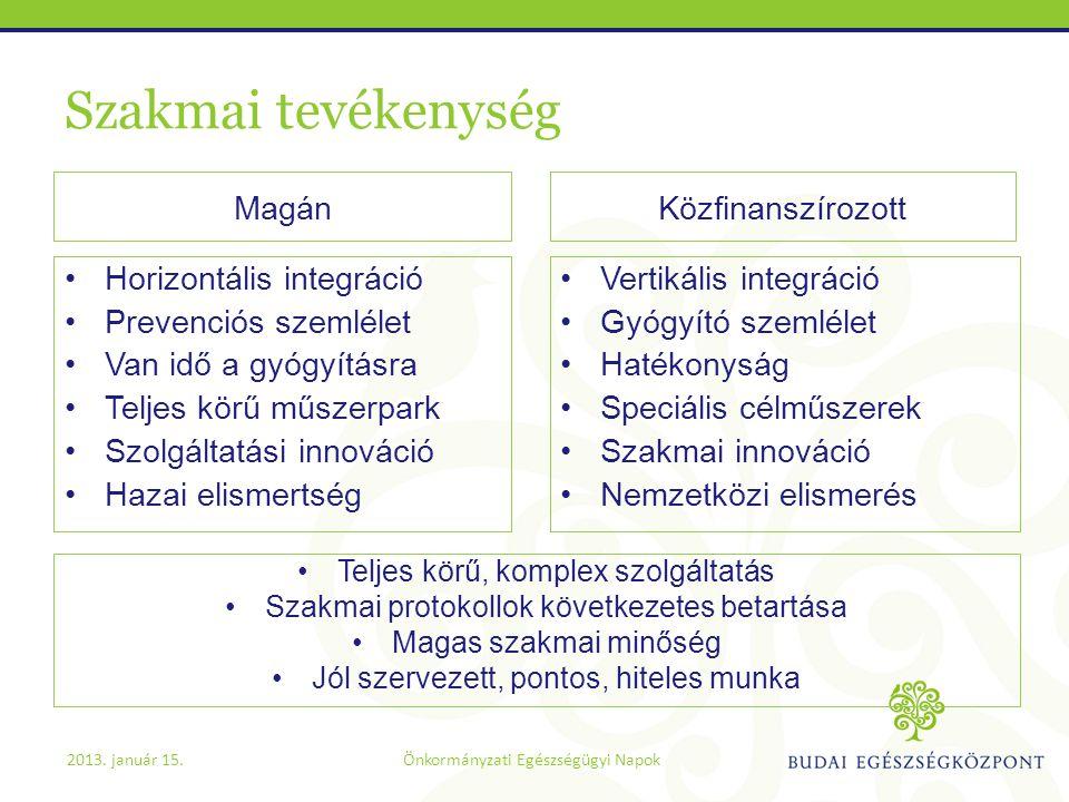 Szakmai tevékenység •Vertikális integráció •Gyógyító szemlélet •Hatékonyság •Speciális célműszerek •Szakmai innováció •Nemzetközi elismerés •Horizontá