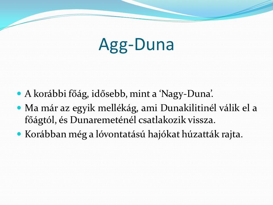 Agg-Duna  A korábbi főág, idősebb, mint a 'Nagy-Duna'.  Ma már az egyik mellékág, ami Dunakilitinél válik el a főágtól, és Dunaremeténél csatlakozik