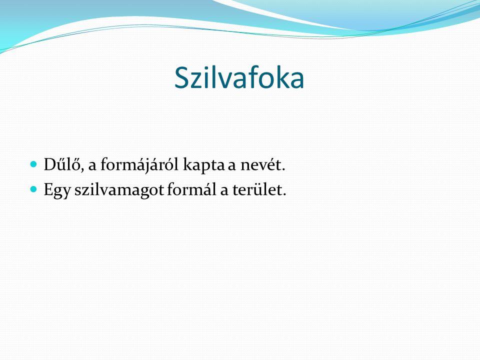 Szilvafoka  Dűlő, a formájáról kapta a nevét.  Egy szilvamagot formál a terület.