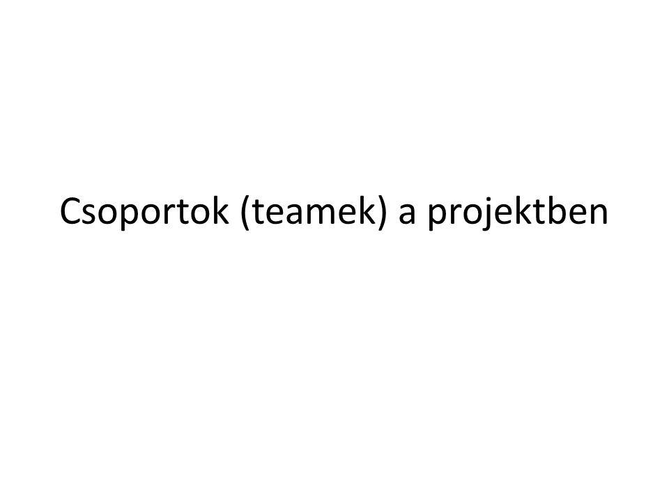 Csoportok (teamek) a projektben