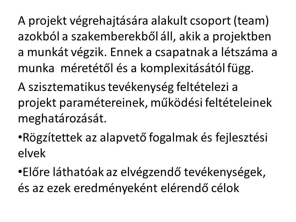 A projekt végrehajtására alakult csoport (team) azokból a szakemberekből áll, akik a projektben a munkát végzik.