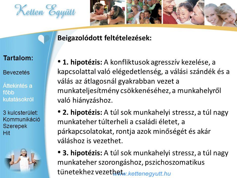 Hungarostudy 2002 és 2006 (dr.