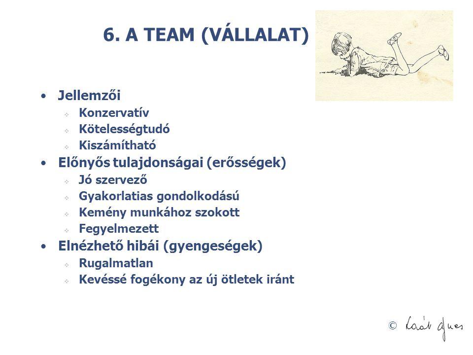 © 6. A TEAM (VÁLLALAT) ÉPÍTŐ •Jellemzői  Konzervatív  Kötelességtudó  Kiszámítható •Előnyős tulajdonságai (erősségek)  Jó szervező  Gyakorlatias