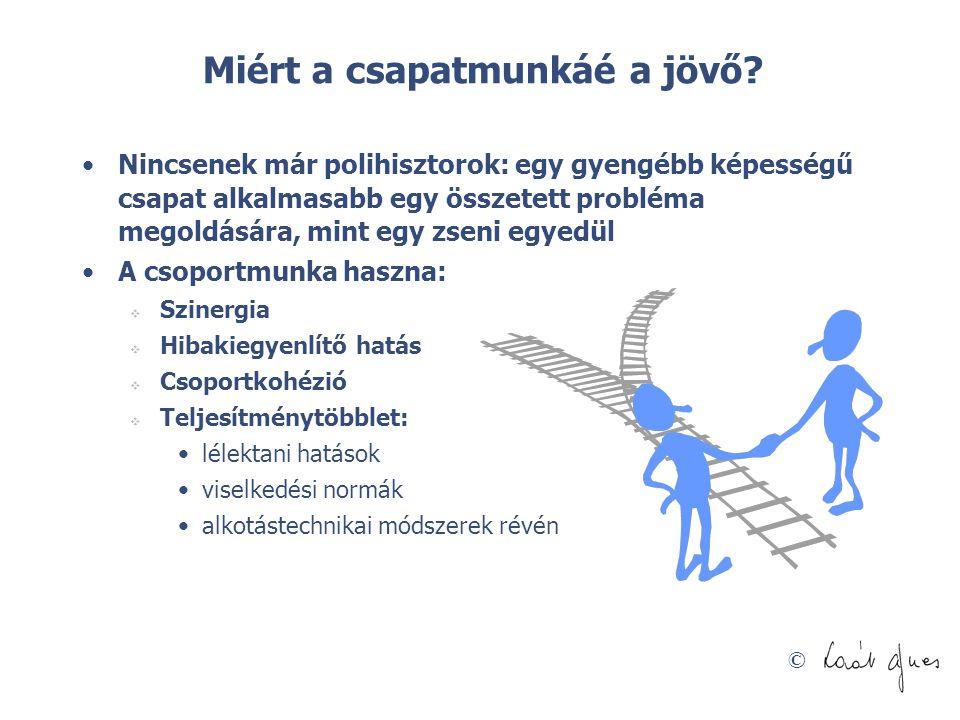 © Miért a csapatmunkáé a jövő? •Nincsenek már polihisztorok: egy gyengébb képességű csapat alkalmasabb egy összetett probléma megoldására, mint egy zs