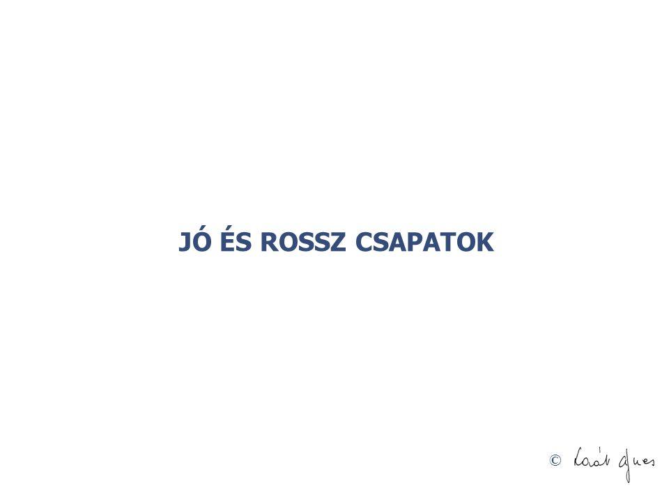 © Ajánlott irodalom •Belbin M.: A team •Fésűs Károly: A vállalati szervezőmunka fejlesztése.