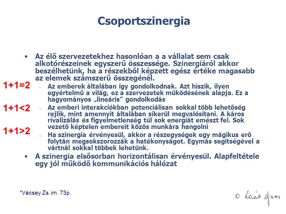 © Csoportszinergia •Az élő szervezetekhez hasonlóan a a vállalat sem csak alkotórészeinek egyszerű összessége. Szinergiáról akkor beszélhetünk, ha a r