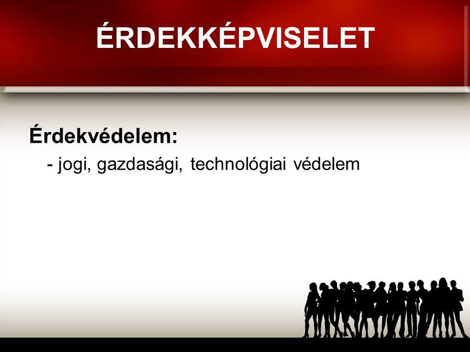 ÉRDEKKÉPVISELET Érdekvédelem: - jogi, gazdasági, technológiai védelem