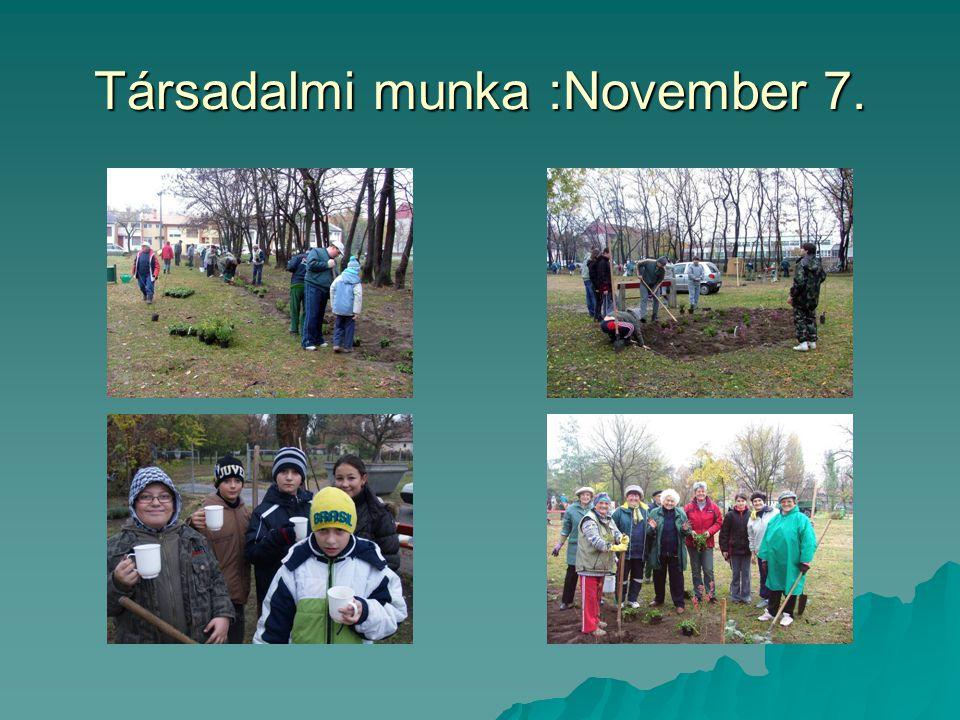 Társadalmi munka :November 7.