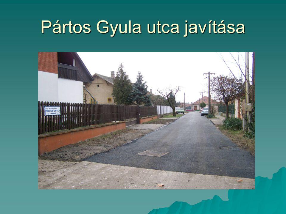 Pártos Gyula utca javítása