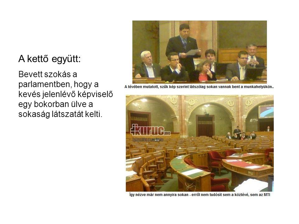 A kettő együtt: Bevett szokás a parlamentben, hogy a kevés jelenlévő képviselő egy bokorban ülve a sokaság látszatát kelti.