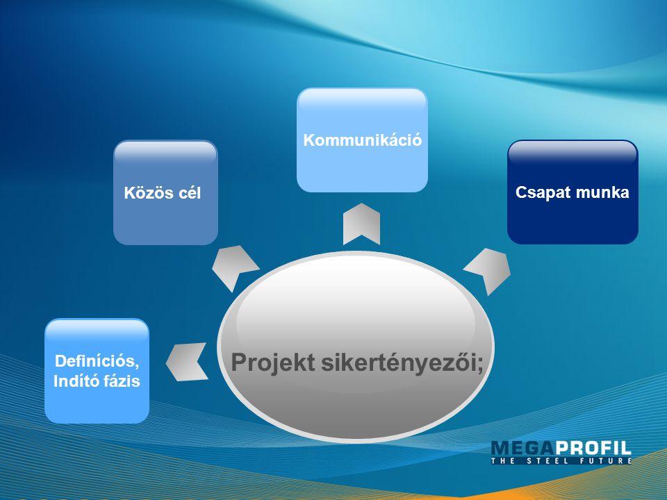 Projekt sikertényezői; Definíciós, Indító fázis Csapat munka Közös cél Kommunikáció