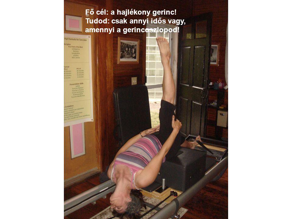 Fő cél: a hajlékony gerinc! Tudod: csak annyi idős vagy, amennyi a gerincoszlopod!