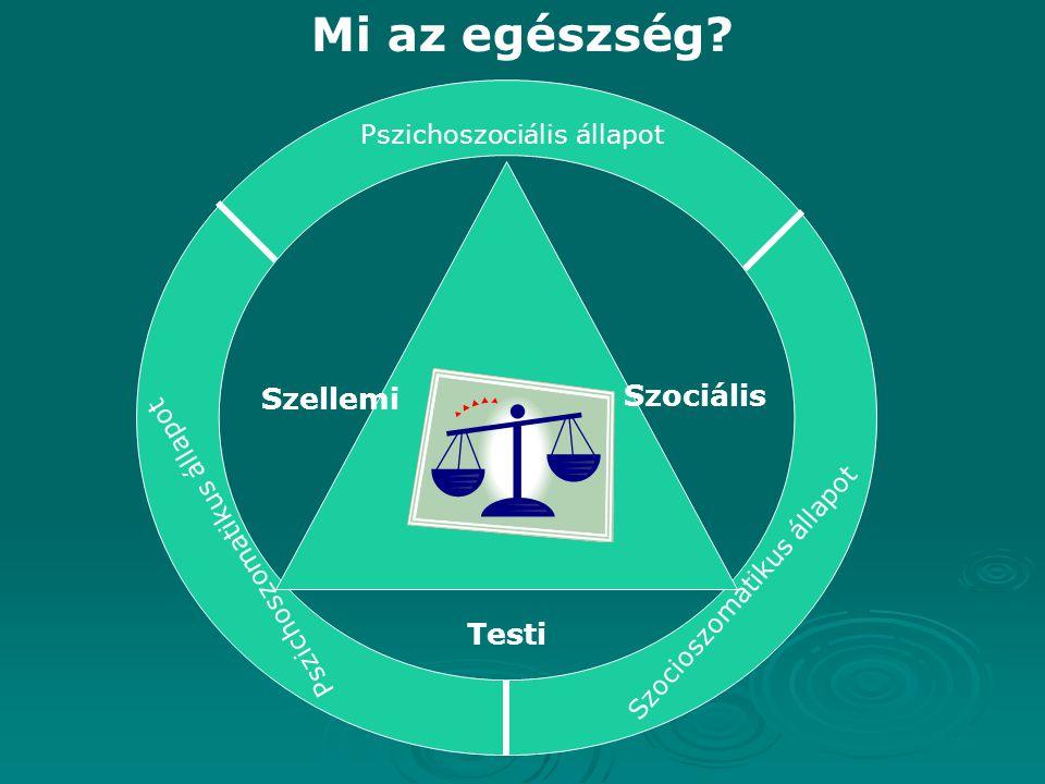 Mi az egészség? Szellemi Szociális Testi Pszichoszociális állapot Pszichoszomatikus állapot Szocioszomatikus állapot