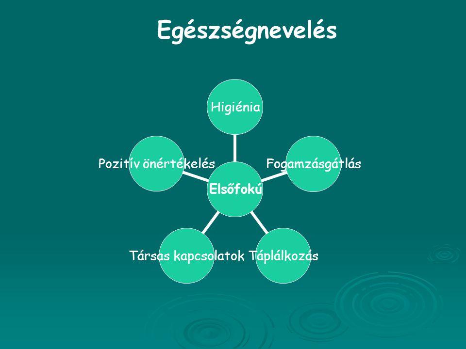 Elsőfokú HigiéniaFogamzásgátlásTáplálkozás Társas kapcsolatok Pozitív önértékelés Egészségnevelés