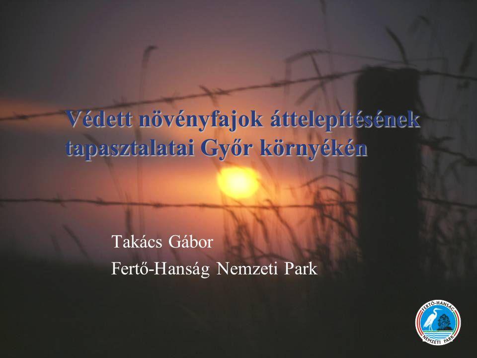 Takács Gábor Fertő-Hanság Nemzeti Park Védett növényfajok áttelepítésének tapasztalatai Győr környékén